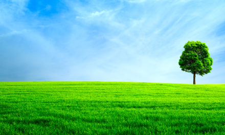 Autoretur 10 år: Vi har spart miljøet for 1 million tonn CO2